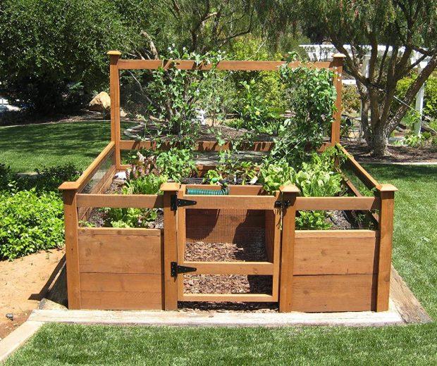 DIY Vegetable Garden Kit