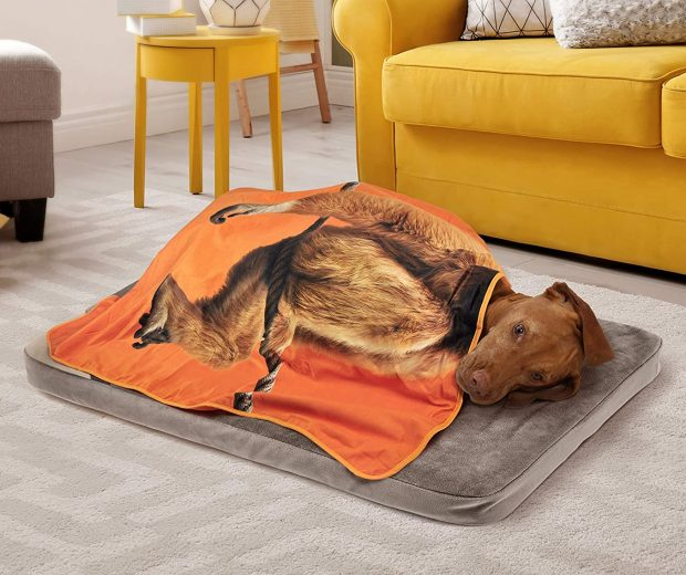 Exotic-PET-Blankets