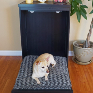 Murphy Bed For Pets